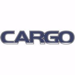 Emblema-Ford-Cargo-Resinado